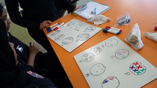 Whiteboarding in class